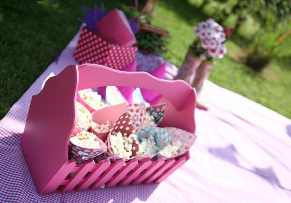 aniversario picnic menina