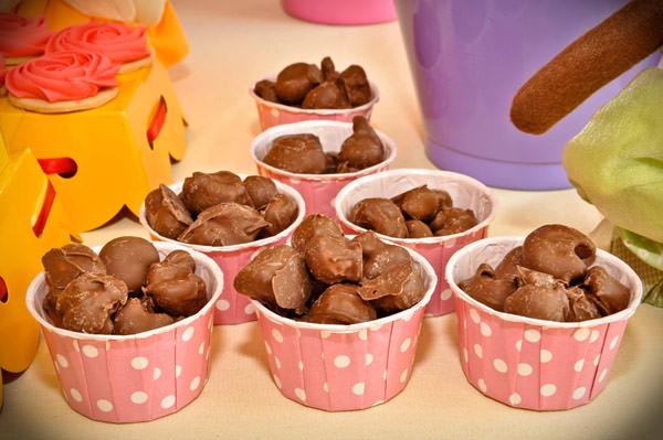 festa-princesas-rosa-decoracao-caraminholando-doces-nika-linden-fantasia-pacoca-09