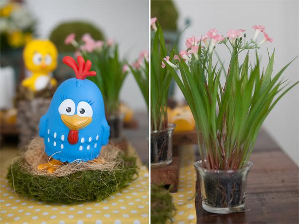 festa-galinha-pintadinha-via-flor-18