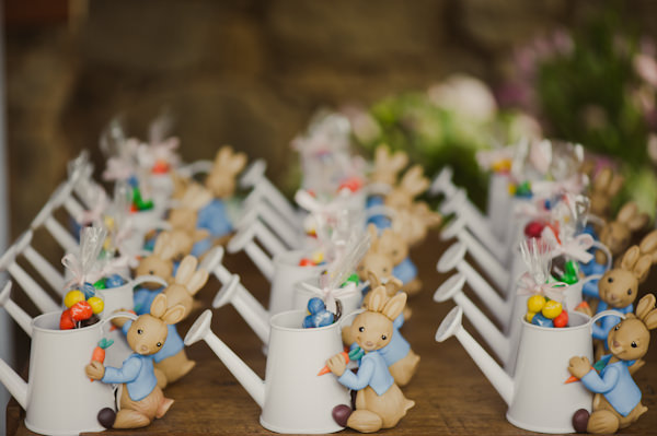 festa-infantil-peter-rabbit-marina-lomar-9