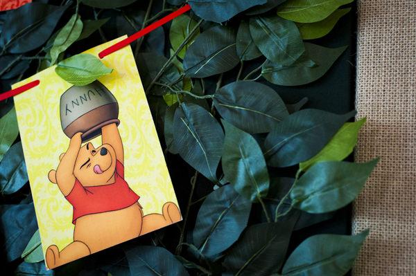 Festinha-ursinho-Pooh-Amanda-Costa-27
