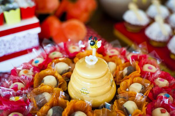 Festinha-ursinho-Pooh-Amanda-Costa-8