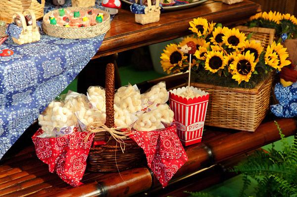 festinha-picnic-patricia-vaks-6