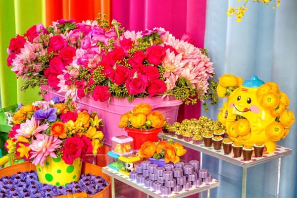 festinha-colorida-bolinhas-e-bichinhos-decoracao-clarissa-rezende-06