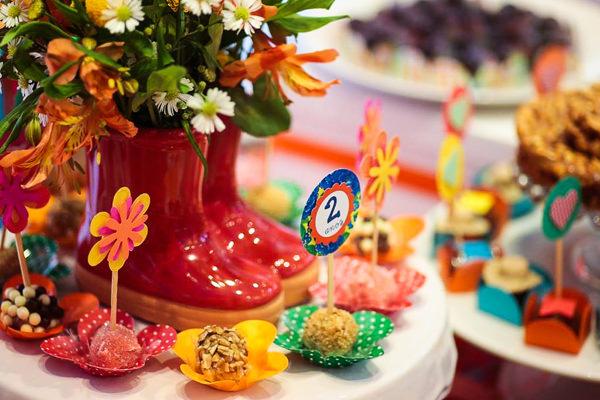 Festinha-festa-junina-elefante-colorido-14
