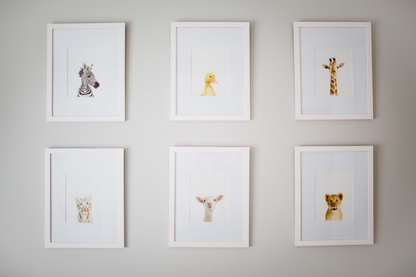 the-animal-print-shop-quadros-bichinhos-quarto-infantil-4