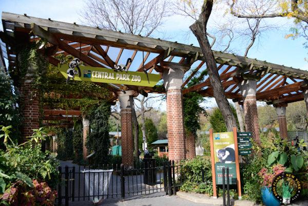 Zoológico do Central Park