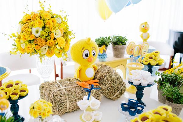 decoracao-aniversario-de-crianca-pintinho-amarelinho-22