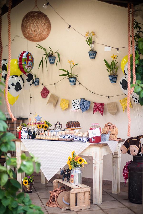 decoracao-festa-infantil-bazendinha-buffet-addad-kids4